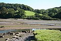 Yealmpton, at Kitley Quay - geograph.org.uk - 546376.jpg