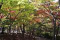 Zuihoji park06s3872.jpg
