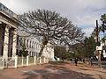 """"""" Instituto de Educação Gal Flores da Cunha """".jpg"""