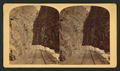 (Double?) Canon, from Robert N. Dennis collection of stereoscopic views.png