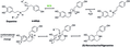 (S)-Norcoclaurine Biosynthesis- the final step.tif