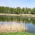 «Альошкина балка», Харківський район, с. Бобрівка - Tym19.jpg