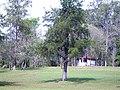 Área verde - panoramio.jpg
