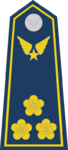 Đại Úy-Airforce 2.png