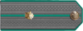 Інспектар мытнай службы IV рангу.png