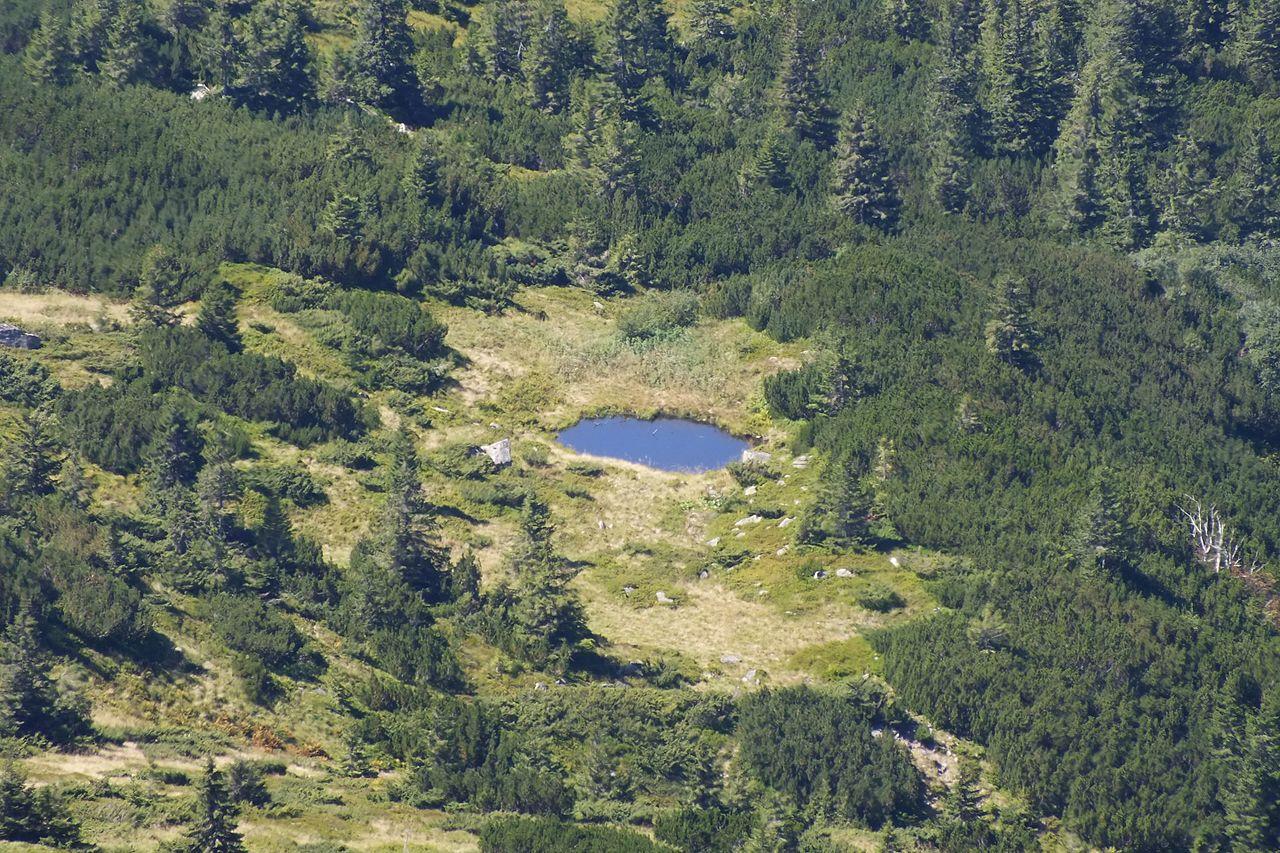 Безіменне озерце