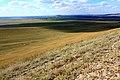 Вид с высоты 304,5 в северо-западном направлении - panoramio.jpg