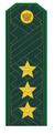 Генерал-полковник ФТС РФ.png