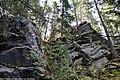Гора Пихтовая.jpg
