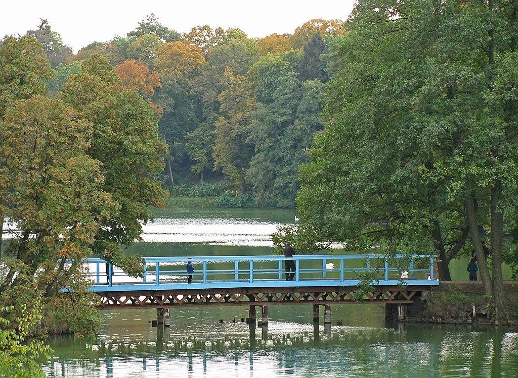 Озеро в парку Тростянець