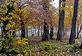 Осінь в Гідропарку.jpg