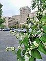 Північний корпус Каразінського університету.jpg