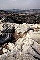 Родопи – Източни - ЗЗ по директивата за местообитанията – ZZ1032 – Източни Родопи от Перперикон, с. Горна крепост - No7.jpg