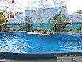 Сочинский дельфинарий парка «Ривьера». 22.jpg