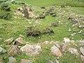 Գյուղատեղի Ռինդ գյուղից հյուսիս.jpg