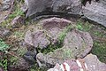 Վանական համալիր Հառիճավանք 28092019 (56).jpg