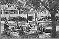 גבעת חיים - ילדי גבעת חיים בעמק חפר-JNF006686.jpeg