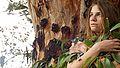 תפילות העצים.jpg