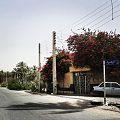 خیابان الزهرا.jpg
