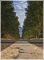 გაზაფხულის საღამოა მშვიდი - panoramio (1).jpg