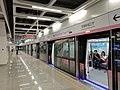 南京地铁空港新城江宁站S7号线站台.jpg