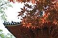 多宝塔と紅葉 - panoramio.jpg