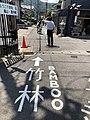 竹林 Arashiyama, Bamboo Forrest (42156827254).jpg