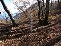 米背負峠 2010-11-04 - Komeshoitoge - panoramio.jpg