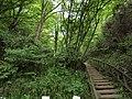 長者穴横穴古墳群 - panoramio - alisa 1988 08 (5).jpg
