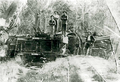 0-4-0ST Andrew Barclay No 237 of 1881 runaway derailment on Boambee Tramway, probably in July 1915. Crew jumped clear, damage 'not serious' or 'severe' (Coffs Harbour Library).png