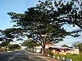 05787jfCity San Fernando Bulacan Welcome Highways Pampangafvf 05.JPG