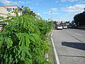 0652jfG Araneta Avenue Flyover River Doña Imelda Quezon City Progreso San Juan Cityfvf 08.jpg