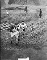 10 km veldloopkampioenschap van Nederland te Zwolle, Lataster Kamp, Bestanddeelnr 903-8417.jpg