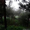11-2015-04-18 محمية جبل النبي متى.jpg