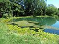 127 Landschaftsschutzgebiet bei Schelklingen.jpg