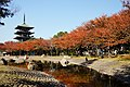 131123 Nozoe-kita Park Harima Hyogo pref Japan01s3.jpg