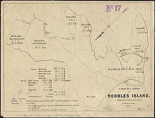 Noddles Island