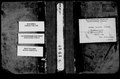 1910 рік. Метрична книга села Воскресенське Херсонського повіту.pdf