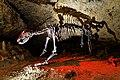 1931 wurde die Teufelshöhle für das Publikum freigegeben. 07.jpg