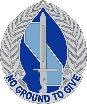 193rd Infantry Brigade (United States) - Image: 193 Inf Bde DUI