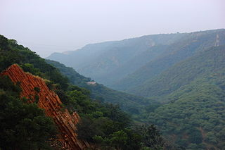 Tectonic evolution of the Aravalli Mountains