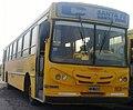 1 Línea 250 C Rosario Bus Santa Fe provincial.jpg