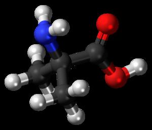 2-Aminoisobutyric acid - Image: 2 Methylalanine 3D balls