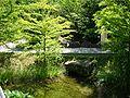 2008 07 Botanical Garden Meran 70150R0115.jpg