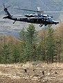 2011년 4월 공군 한미연합 생환 및 산악 구조훈련(4) (7499908016).jpg