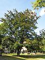 20120816Wasserturm Hockenheim08.jpg