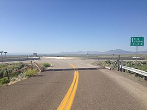 Cattle grid - Cattle guard at entrance ramp onto the Interstate Highway System in Nevada