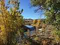 2015-10-30 10 03 32 View south up the Poplar-lined Truckee River during autumn from the Main Street (Nevada State Route 427) bridge in Wadsworth, Nevada.jpg