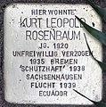 2015-11-21 Neustadt am Rübenberge Stolperstein Rosenbaum Kurt Leopold (cropped).jpg