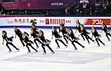 2015 Grand Prix of Figure Skating Final Team Nexxice IMG 9184.JPG